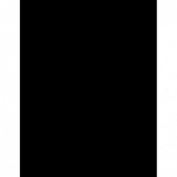 Cinnamon Gaia's incense