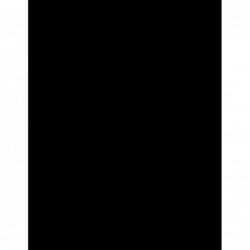 Plug oorpiercing 16 mm Tijgeroog