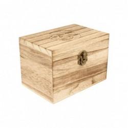 Bergkristal rood met cactuskristallisaties